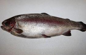Вот такая у нас непотрошеная рыбка, и мы тратим 7-10 минут на простые действия: сначала промываем ее, затем счищаем чешую (ее немного), надрезаем брюшко, потрошим и выскабливаем; удаляем плавники.