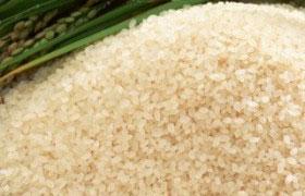 Рисовая диета: стоит попробовать.