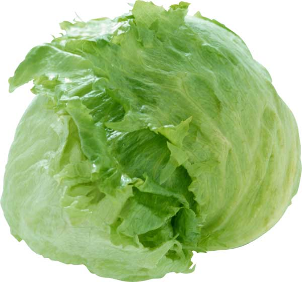 Айсберг - салат