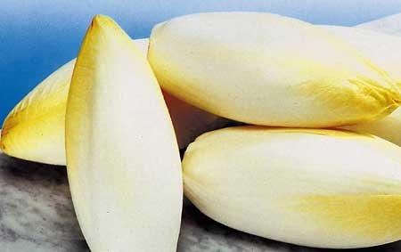 Витлуф - салат