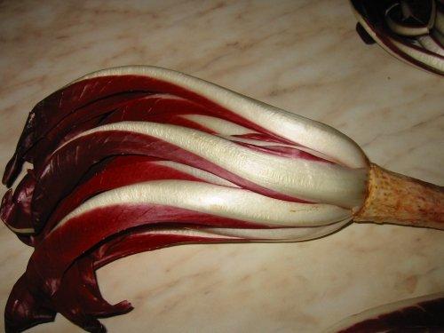 Радиккьё - салат