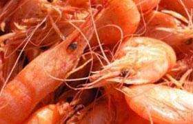 Креветки: как выбирать и правильно готовить