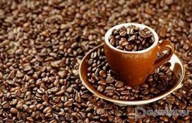 Выбор сорта и помола кофе