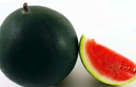 Японский черный арбуз ушел за рекордную цену
